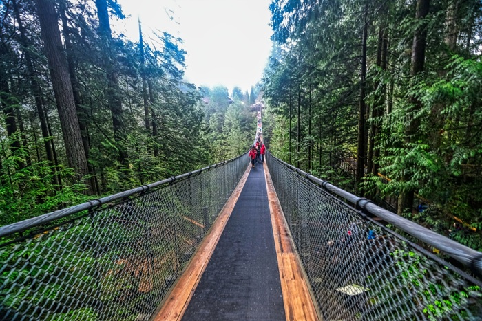 Capilano Suspension Bridge in Vancouver, Canada